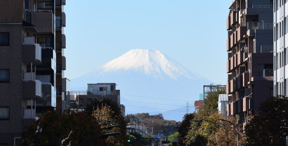 駅からの富士山