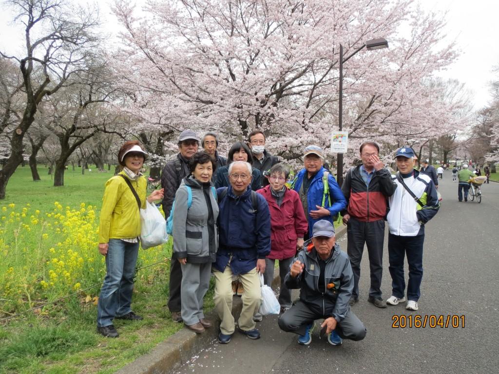 IMG_0168 小金井公園にて
