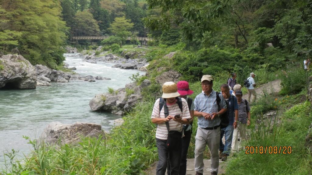 御岳渓谷(2)