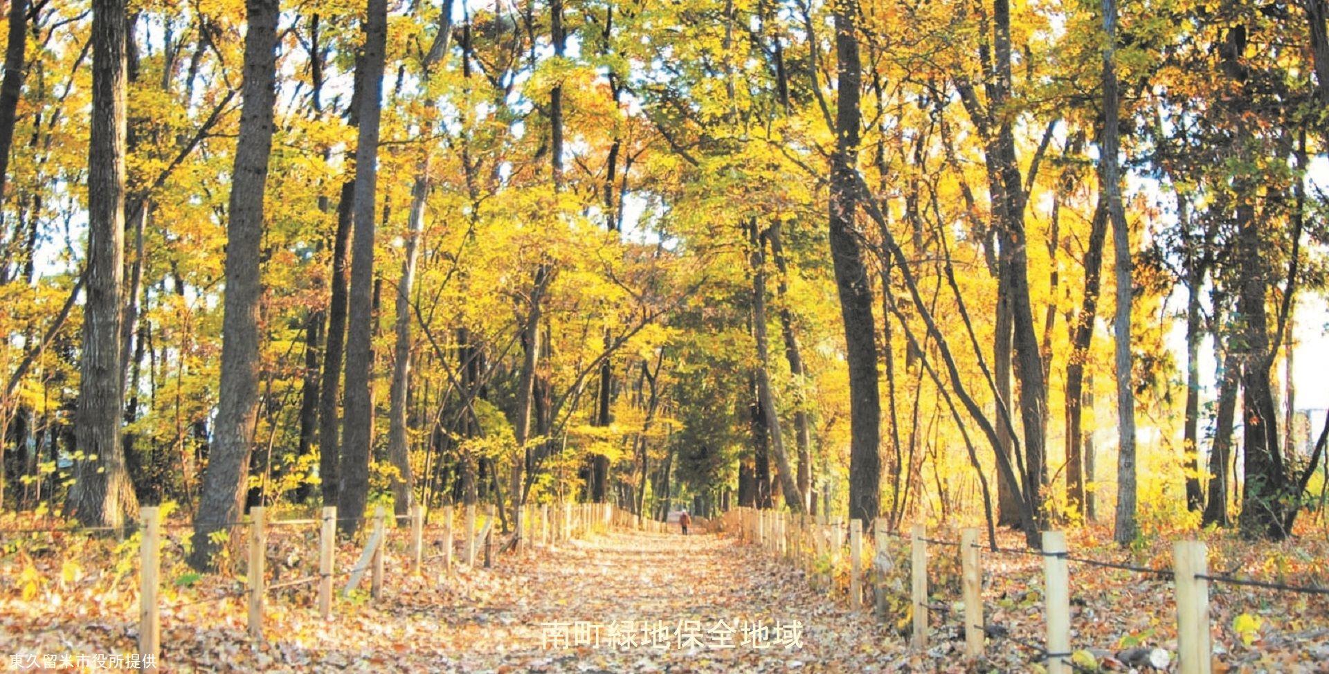 南町緑地保存地域